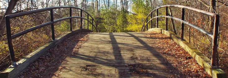 Header image of a bridge